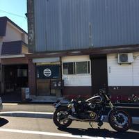 昼活@ひまわり畑カツカレーそばを食べに行こう!20181004 - ウエスティー、味な店、ハーレー日記
