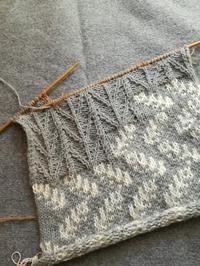 カーディガンを編み始めました - ニットの着樂