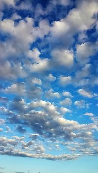 ひつじ雲 - 目から鱗ンタクトレンズ