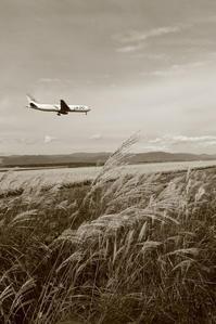 秋のかおり~旭川空港~ - 自由な空と雲と気まぐれと ~from 旭川空港~