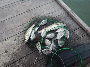 日本海秋釣り -