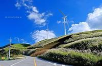 ススキと風車 - A  B  C