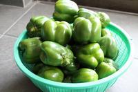 緑のパプリカ - 登志子のキッチン
