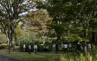 昭和記念公園コスモスの秋 - M8とR-D1写真日記