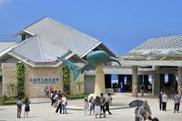 まゝに/10月の夏休み.沖縄3 美ら海水族館 - Maruの/ まゝに