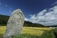 1421 石碑と稲 - 四季彩空間遠野