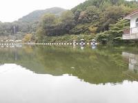 2018年10月10日円良田湖 - バクバク!ヘラブナ釣行記
