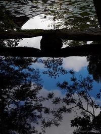 ひとつの贅沢 - M2_pictlog
