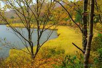 雨の八幡平大沼 - デジタルで見ていた風景