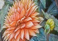 ニス掛け - 絵と庭