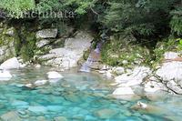 銚子川の小滝 - みちはた写真館フォトギャラリー