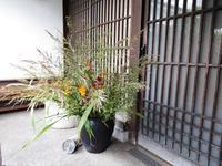 秋・野の花 - 商家の風ブログ