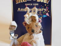 Ritti Bear 20th Anniversary -since 1998~2018- - 動物・テディべア 時々 パリの街角動物