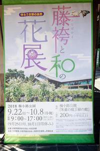 アサギマダラ藤袴と和の花展@梅小路公園朱雀の庭 - デジタルな鍛冶屋の写真歩記