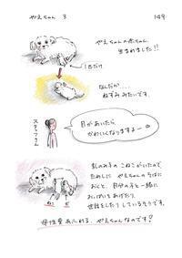 やえちゃん3 - 今日もゆくねこ