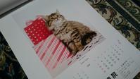 もう来年のカレンダーいただきました〜〜 - チェリーちゃんねる  第2章