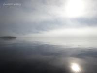霧海Ⅱ分厚いオヒョウ港のアザラシ - f's note ak