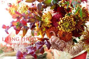 11月21日(水) Aoyama Flower Market ★Hana-Kichi LIVING PHOTO with Flowers 申し込み開始 - LIVING PHOTO
