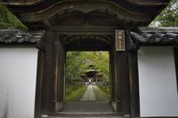 「一休寺境内」 - hal@kyoto