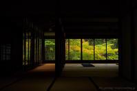 額縁庭園 - M2_pictlog