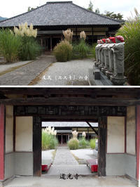 長瀞-秋の七草寺巡り -  ★ 野草デジカメ日記★