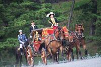 皇居へ信任状捧呈式の儀装馬車列を見に行きました - 子猫の迷い道Ⅱ