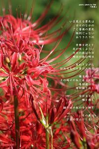 詩庭 - Poetry Garden 詩庭