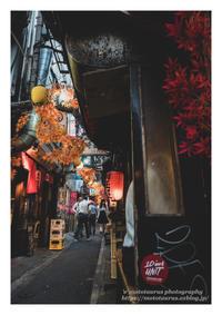 秋飾り - ♉ mototaurus photography