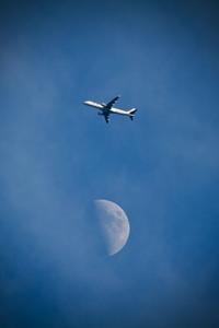 JALの公式アカウントからコメントバック♬ - Air Born Japan 日本の空を、楽しもう!