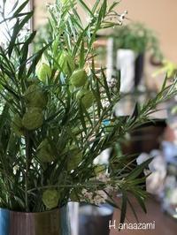 お店のお花とスワッグ - 暮らしに花を 〜    花あざみ安城  0566‐77-4187