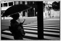 散歩中京辺り-13 - Hare's Photolog
