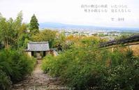 奈良高円白毫寺の萩 - 暮らしを紡ぐ