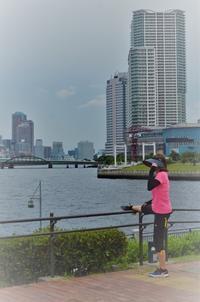 豊洲市場開場 - 雲母(KIRA)の舟に乗って