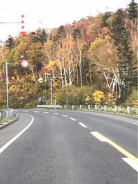 メープル街道〜小樽  紅葉♪ - 笑う門には福来たる