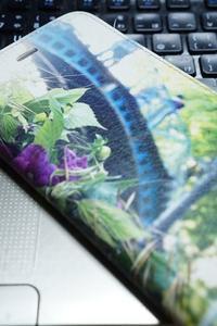 世にも不思議な携帯神隠し事件 - お花に囲まれて