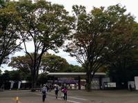 バラ撮影会のため神代植物園にロケハンに来てます。 - meの写真はザンス