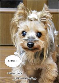 おもっきし!!(笑)^^;♪ - ☆Happy time☆