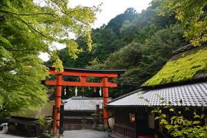 嵐山?清滝トレイル - テキトー日記