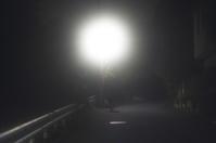 夜の散歩(3cut) -     ~風に乗って~    Present