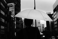 雨の日(4cut) -     ~風に乗って~    Present