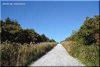 利尻富士へと向かう白い道 - 北海道photo一撮り旅