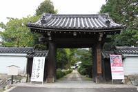 京都の秋隋心院 - 浜千鳥写真館