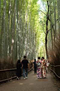 そうだ、嵐山・嵯峨野を目指そう!-3- - Photo Terrace