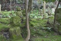 「鎮座する石仏」 - hal@kyoto