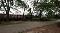 梅小路公園 - 五十路を過ぎてブログに挑戦