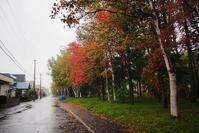 10月12日今日の写真 - ainosatoブログ02