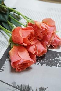 本日のお初は「かおりかざり」 - お花に囲まれて