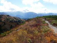 三方岩岳下山ふくべ谷上園地展望台新コース散策 - 風の便り