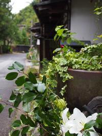おひとり様撮影の旅@木曾路7 - 55歳☆専業主婦はじめました