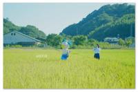 可愛すぎる案山子。 - Yuruyuru Photograph